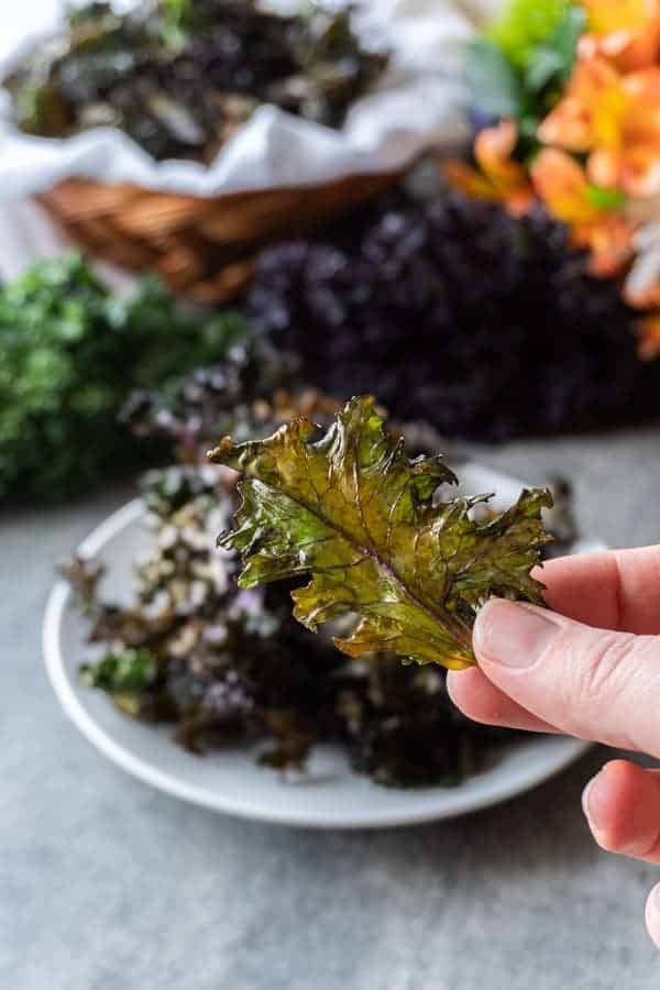Baked Kale Chip being held